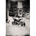Bike in Snow print