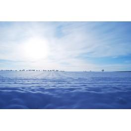 Fields of Snow print